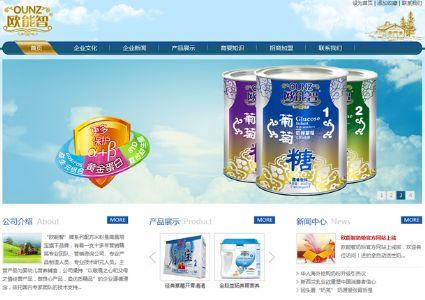 定制型企业网站